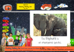 X-tra! A PEACE for ENDANGERED SPECIES (en) - (EN) Elephant